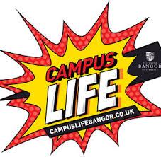 college essays college application essays campus life essay campus life essay