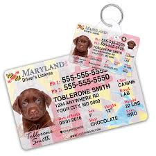 Driver Wallet License Maryland And Id Pet Custom Card Tag
