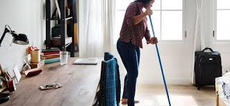 10 Reasons You Should Never Hire A Professional Cleaner Pnp
