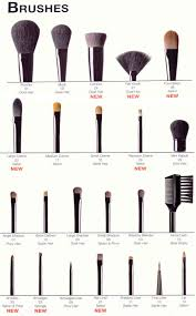 diffe eye makeup brushes photo 1