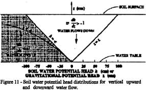 Water Potential Equation A Brief Review Of Soil Water Solute Transport And Regionalized