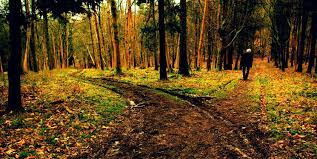 robert frost s the road not taken theme analysis   he rejects that aspiration as impractical however at least for the day at hand the road he selects is the one less traveled by sugg