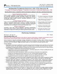 Chief Innovation Officer Sample Resume Download Cto Resume
