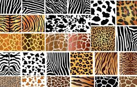 Animal Patterns Beauteous Free Download Of Animal Skin Patterns Vector Graphic Vectorme