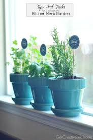 Kitchen Herb Garden Planter Tips And Tricks To Maintaining An Indoor Kitchen Herb Garden