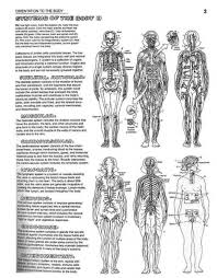 Coloring Beautiful Human Regional Anatomy Coloring Pages Colorings