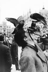 Alain Delon in Piazza San Marco Venice 1962. Photo by Jack.