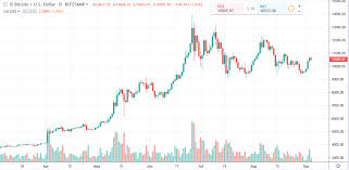 Bitcoin Daily Chart Alert Bulls Still Have Some Momentum