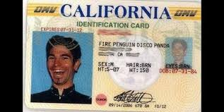 License drivers Id Military Of With 2 Witnesses Government Forms Yelp State Passport - These Id Only Acceptable Id One Forms Credible