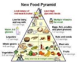 food pyramid essay food pyramid essay term paper 1298 words