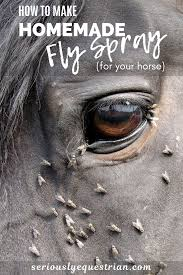 make homemade fly spray for your horse