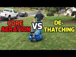 yard care tips aeration dethaching for an awesome diy lawn white bear lake mn
