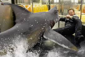 Image result for sharknado ian ziering