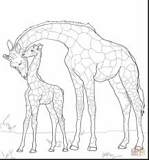 Printable Coloring Pages coloring page giraffe : incredible giraffe coloring pages with giraffe coloring page ...