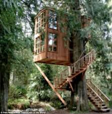 Worlds Tallest Tree House Walkthrough  YouTubeLargest Treehouse In America