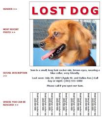 lost and found flyers lost dog flyer template lost and found dog flyer humane society of