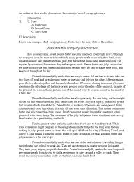 Example Of 5 Paragraph Essays Perfect 5 Paragraph Essay Topics Tips And Examples
