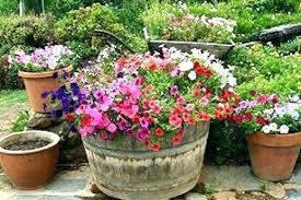 patio plants in pots ideas full size of outside flower pots ideas outdoor pot for plants patio plants in pots ideas patio plant