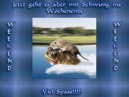 Sprüche Wochenende Gif 8 Gif Images Download