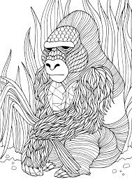 Gorilla Adult Colouring Page Colouring In