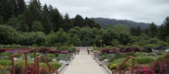 humboldt botanical garden get your nature on