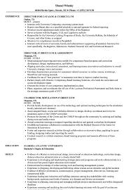 Curriculum Director Resume Samples Velvet Jobs