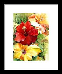 Glorious Hibiscus Framed Print by Priscilla Powers