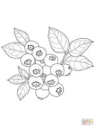 Small Picture 1038 best Drawing Flowers Tutorials images on