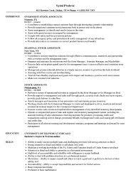 Stock Associate Resume Samples Velvet Jobs