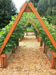 corrugated raised garden bed corrugated raised beds with a frame supports for climbers corrugated raised garden corrugated raised garden bed