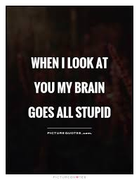 Stupid Quotes Adorable Stupid Quotes And Sayings
