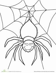 Small Picture Spider Worksheet Educationcom