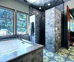 doorless walk in showers shower ideas large size of and small bathrooms bathroom doorless walk in showers