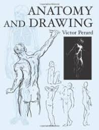 anatomy and drawing 2004