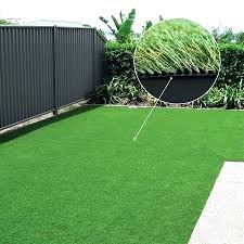 exotic fake grass lawn best artificial price cheap melbourne lawns cost p22