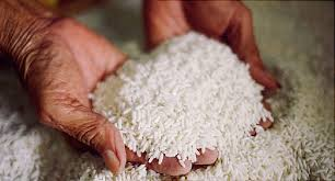 Different Types of Rice and Best Ways to Enjoy Them