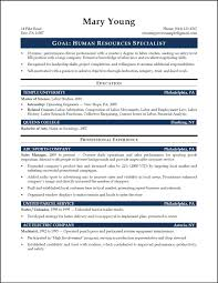 Human Resources Resume Summary Statement Resume For Study