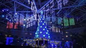 Christmas Night Light Show New Lit Christmas Tree Lighting Light Show At Gaylord Palms Resort 2019 Orlando Fl Holidays