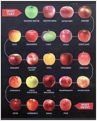 Apple Varieties An Alphabetical Chart Of Which Apple To