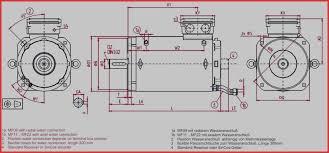 Century Motors Wiring Diagram Ac Motor Wiring Diagram Century Lasar Pool Spa Motor 1081