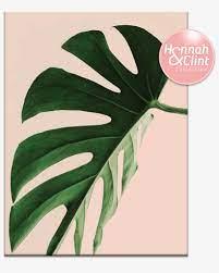 21hc Proud Leaf - Plants Minimalist ...