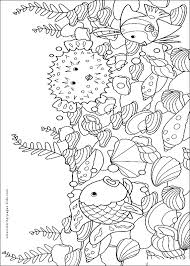 Small Picture blowfish Fish color page animal coloring pages color plate