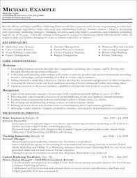 Strengths In Resume Simple Personal And Professional Strengths Resume Examples Of For