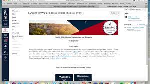 Idd 690 Instructional Design Internship