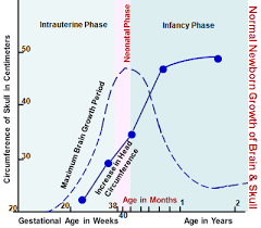 Premature Head Circumference Growth Chart Newborn Growth Influences Child Health