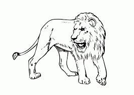 Small Picture Coloring Pages Animals A Lion Coloring Page Lion Coloring Pages
