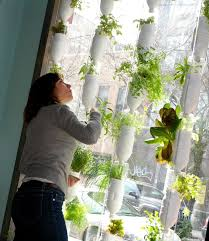 Small Picture Best 25 Vertical garden systems ideas on Pinterest Compost