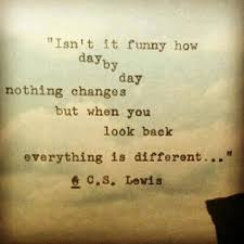 Quotes From Cs Lewis Best Day By Day Cs Lewis Quote Dust Off The Bible