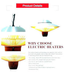heat lamp for dogs outside outdoor pets lamps heating
