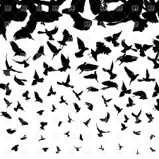 bird in flight silhouette vector. Modren Bird Background With Flying Birds Silhouettes Vector Image U2013 Artwork Of  Plants And Animals  Lirch Click To Zoom For Bird In Flight Silhouette B